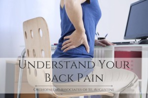 Understand Your Lower Back Pain